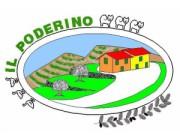 Foto principale di Il Poderino Lamporecchio Agriturismi