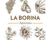 Foto principale di Agriturismo La Borina San Bonifacio Ristoranti