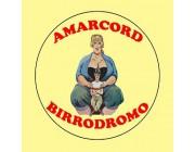 Foto principale di Birrodromo Amarcord Cattolica Ristoranti