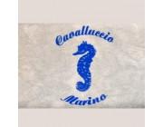 Foto principale di Cavalluccio Marino Beach Camaiore Stabilimenti Balneari