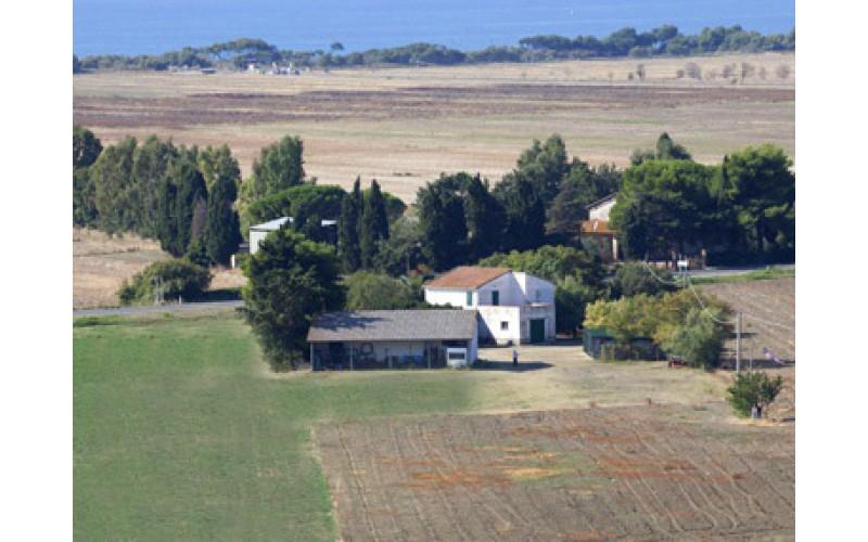 AZIENDA AGRICOLA in VENDITA a PIOMBINO - RIOTORTO