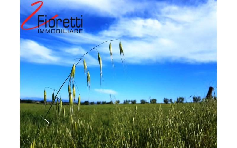 TERRENO AGRICOLO in VENDITA a PIOMBINO - RIOTORTO