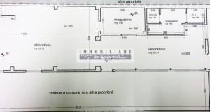 cerca VIAREGGIO - MIGLIARINA Viareggio FONDO ARTIGIANALE VENDITA