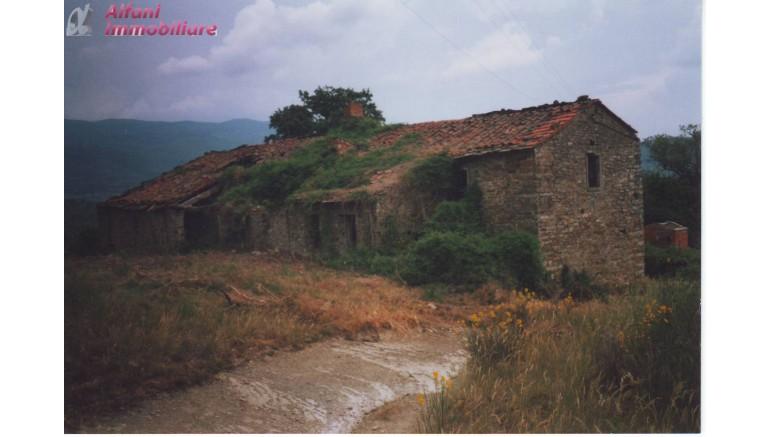 AZIENDA AGRICOLA in VENDITA a CAPOLONA