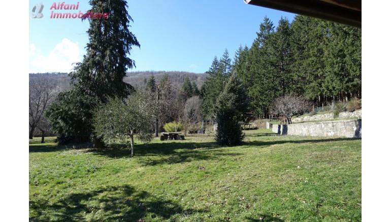 COLONICA in VENDITA a CASTEL FOCOGNANO