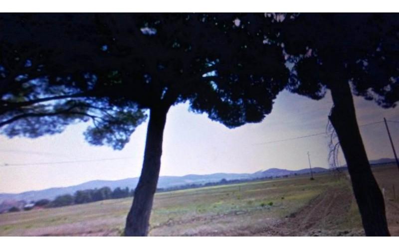 TERRENO AGRICOLO in VENDITA a GROSSETO - ALBERESE