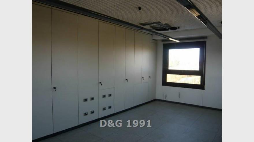 4D & G 1991