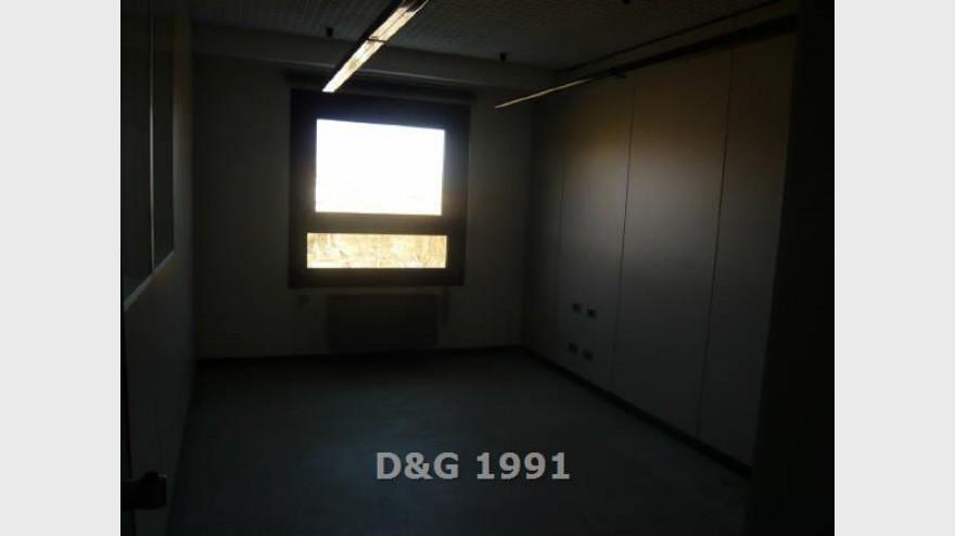 5D & G 1991