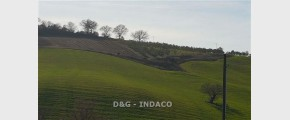 182 DEG1991 - SITOWEB