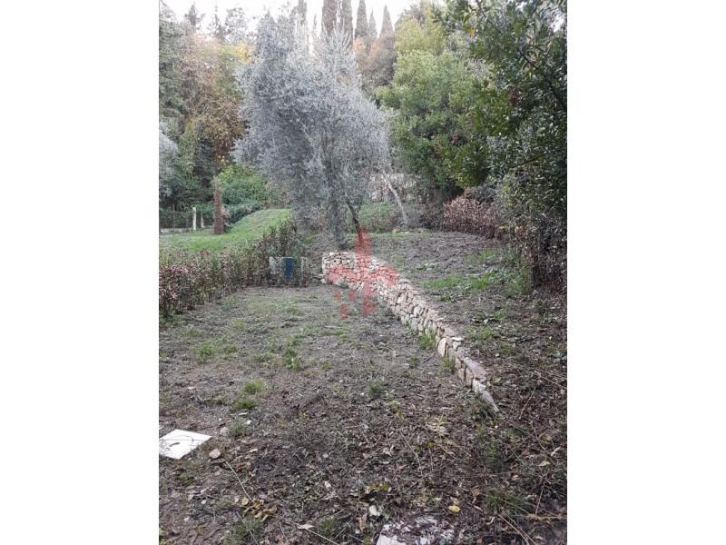 giardino-giardino