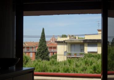 cerca Firenze  Alberti / Bellariva ATTICO VENDITA