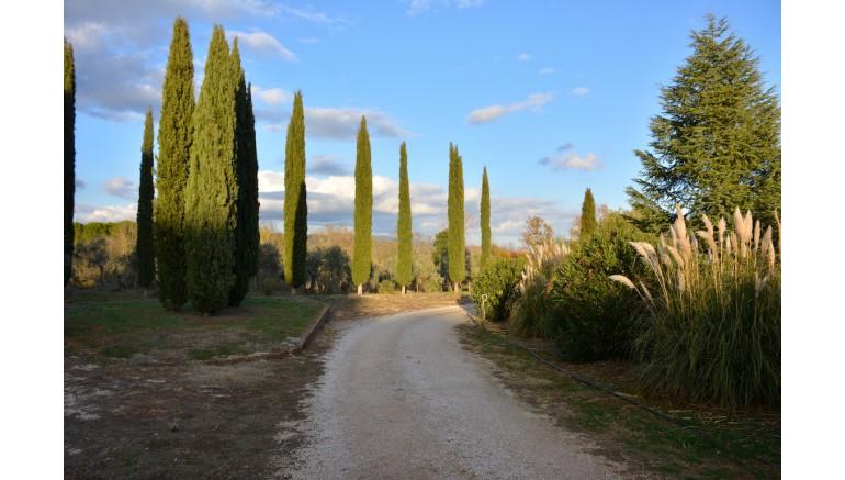 VILLA in VENDITA a GAVORRANO - RAVI