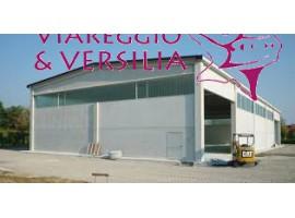 MASSAROSA - MONTRAMITO  IMMOBILE COMMERCIALE VENDITA