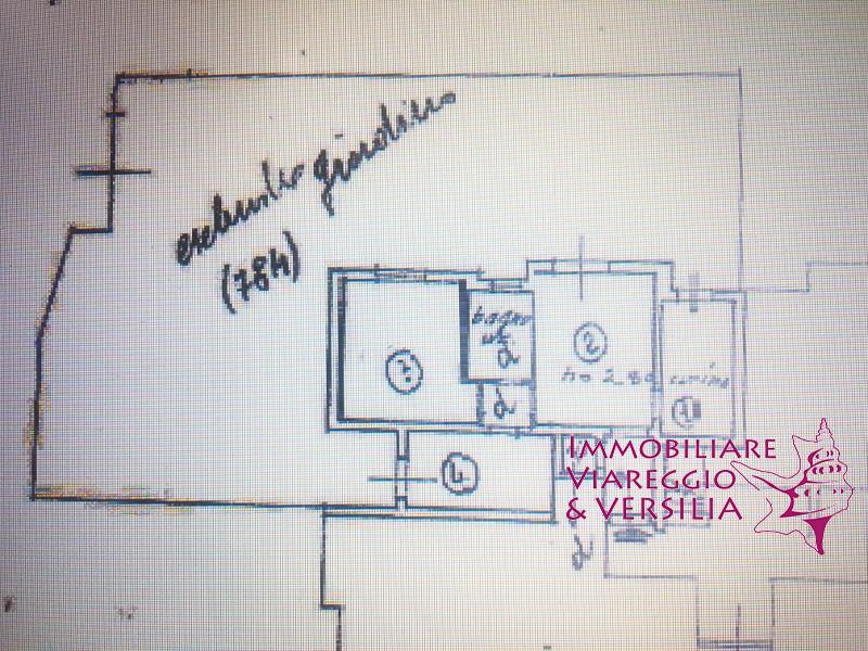APPARTAMENTO in VENDITA a VIAREGGIO - GENERICA