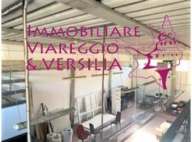 VIAREGGIO - COTONE  CAPANNONE VENDITA