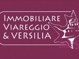 VIAREGGIO - MIGLIARINA Migliarina TERRENO AGRICOLO VENDITA VIAREGGIO (ZONA TERMINETTO)